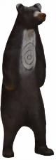 Björn stående  (Ursus xxxx )