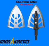 Silver Flame 125