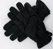 Skjuthandske Winter Glove